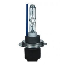 Pro-line H7 HID Xenon lamp 6000K